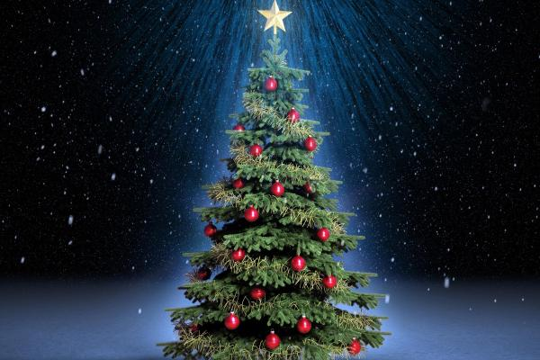 تحويل اللحية لشجرة الكريسماس..أغرب إحتفالات الرجال بعيد الميلاد..فيديو